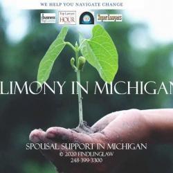 Michigan alimony