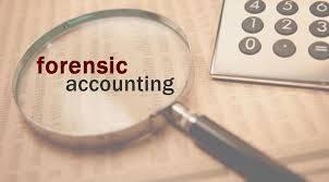 Forensic Accountant